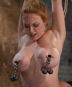 Roped, clamped, suspended and vibed