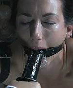 Extremely bound, hardly tormented and made to cum