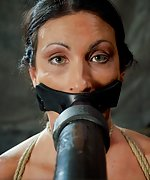 Roped, whipped, tits-clamped, trained with penis-gag, vibed
