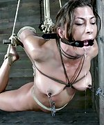 Roped, hogtied, suspended, tit clamped, vibed