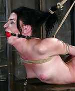 Roped, suspended, hogtied, dildoed and vibed